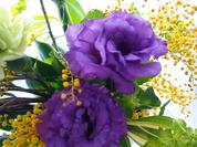 生花のみずみずしさを楽しもうvol.3 'トルコキキョウ'